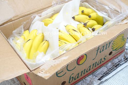 オーガニックバナナ 11kg(今回は75本入り)がヤマトクール便で到着!クリーミーなコクと甘さが美味しい有機栽培バナナ!スムージーやヴィーガンアイスクリーム作りなどに活躍
